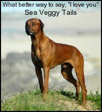 Keep your dog healthy and strong with Sea Veggy Tails