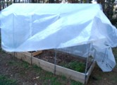 square foot gardening, greenhouses, hoop houses