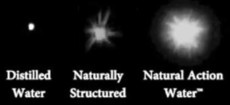 Natural Action Technology Biophotons