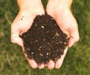 Dark rich compost