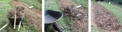 My mulch, gathered from the woods behind my house, will make a nice mulch for my garden