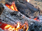 Ash left from burning wood is high in potassium, but is also high in pH. Click for picture source