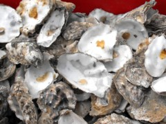 Wikimedia picture. You can buy crushed oyster shells, or perhaps even crush some yourself
