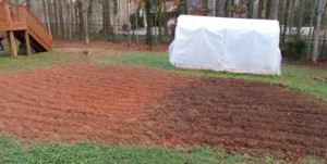 Newly tilled soil next to soil that has been improved