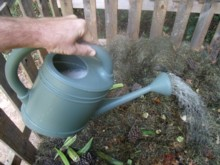 I use a watering can to apply my activator to my compost pile