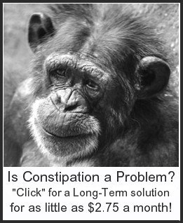 Get rid of Constipation forever!  An all natural, effective, long-term solution for as little as $2.75 a month!