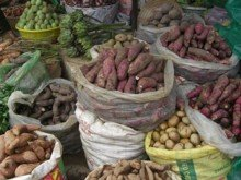 Various varieties of potatoes available at a market