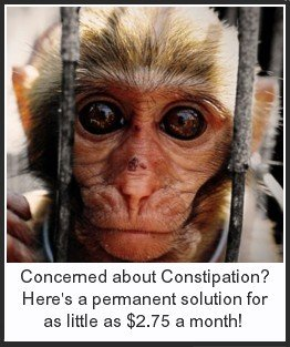 Click here to learn of a permanent, effective way to alleviate constipation for as little as $2.75 a month.