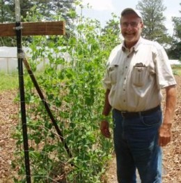 Here I am, right after examining my Sugar Snap Pea vines to make sure they are attached to the trellis.